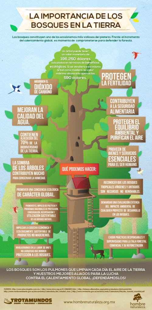 infografia-biodiversidad (1)