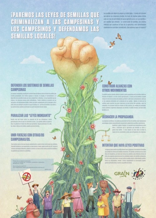 infografia-biodiversidad (3)