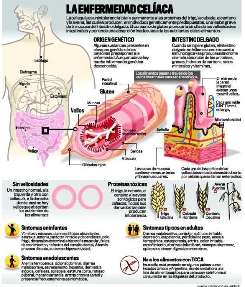 dia del celiaco información (6)