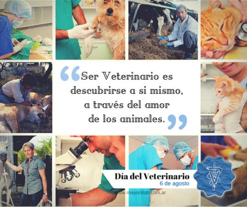 dia del veterinario frases imagenes  (1)