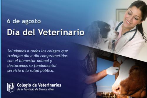 dia del veterinario frases imagenes  (12)