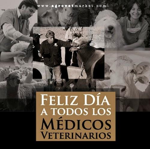 dia del veterinario frases imagenes  (2)