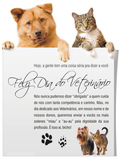 dia del veterinario frases imagenes  (3)