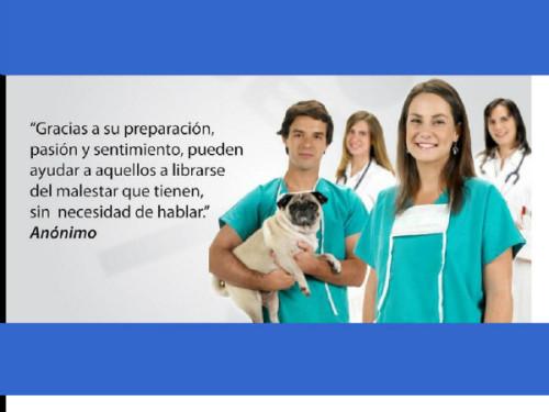 dia del veterinario frases imagenes  (9)