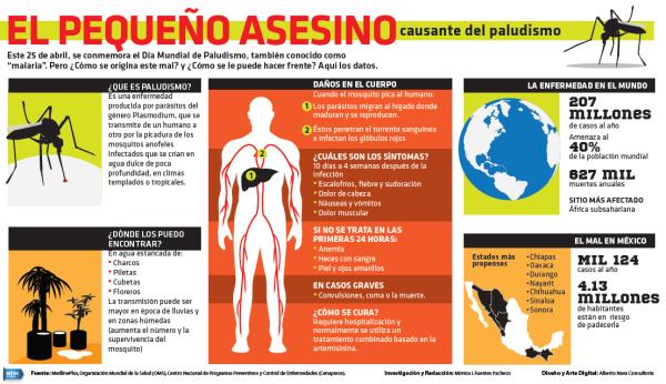 paludismo o malaria - información  (1)