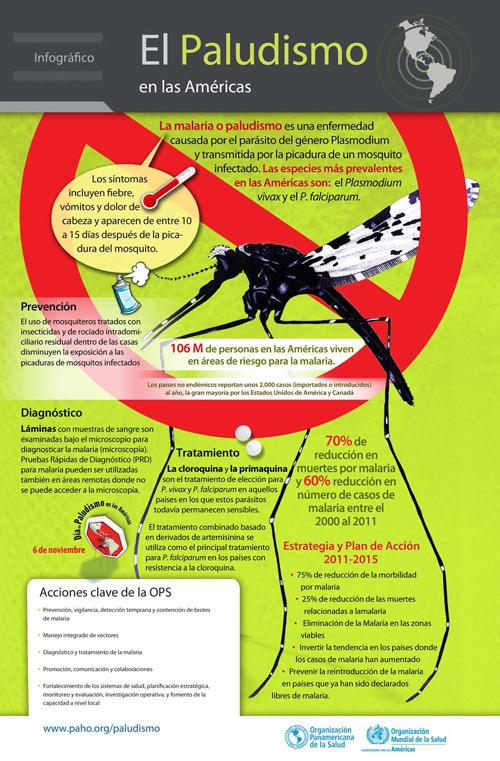 paludismo o malaria - información  (11)
