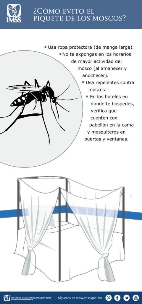 paludismo o malaria - información  (3)