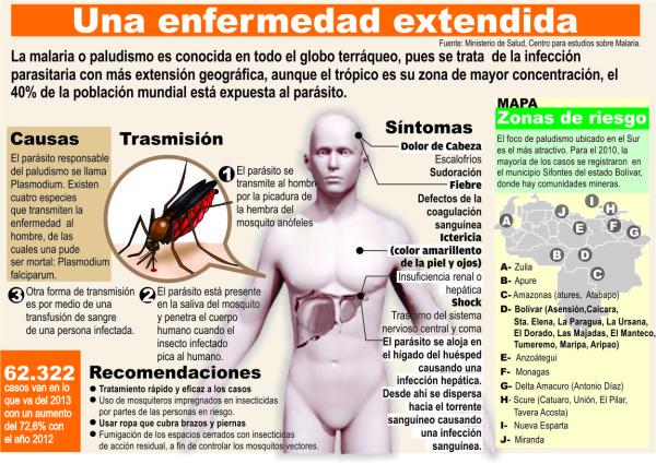 paludismo o malaria - información  (4)