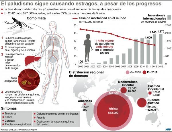 paludismo o malaria - información  (9)