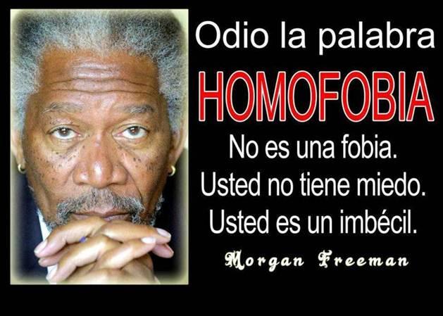 Día contra la Homofobia - 17 de mayo - frases (3)